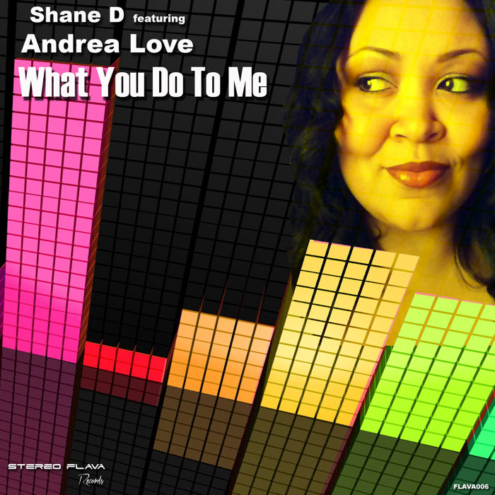 Shane D feat. Andrea Love – Whay You  Do To Me
