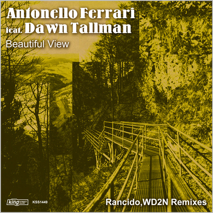 Antonello Ferrari feat. Dawn Tallman : Beautiful View (Remixes)