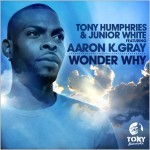Tony Humphries & Junior White feat. Aaron K. Gray : Wonder Why