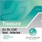 DJ Mr CSP feat. Aderlee : My Treasure