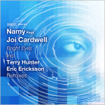 Namy feat. Joi Cardwell : Bright Eyes